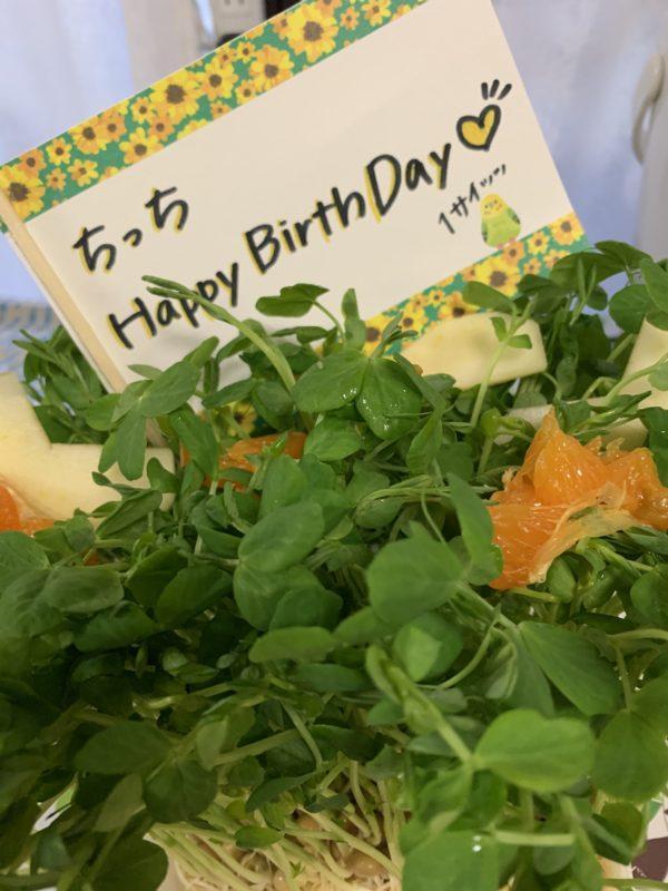 一歳のお誕生日♡