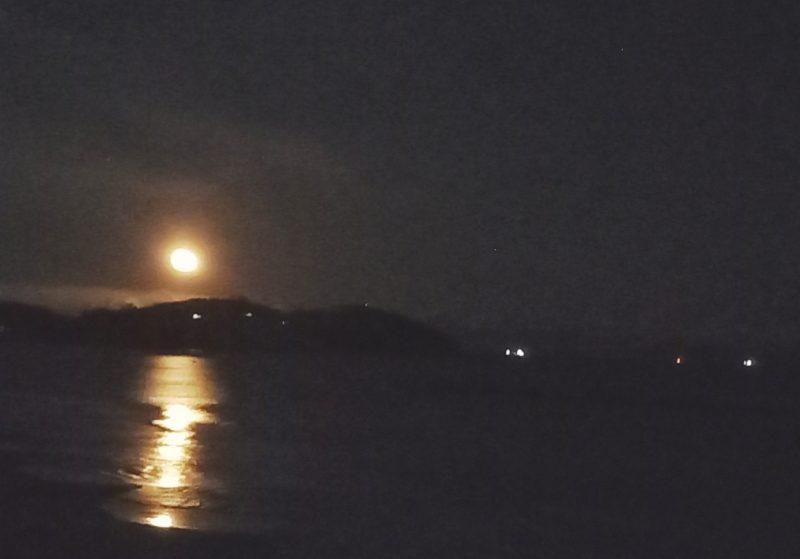 5月12日(水) 新月の遠隔クォンタムタッチ®️ヒーリング