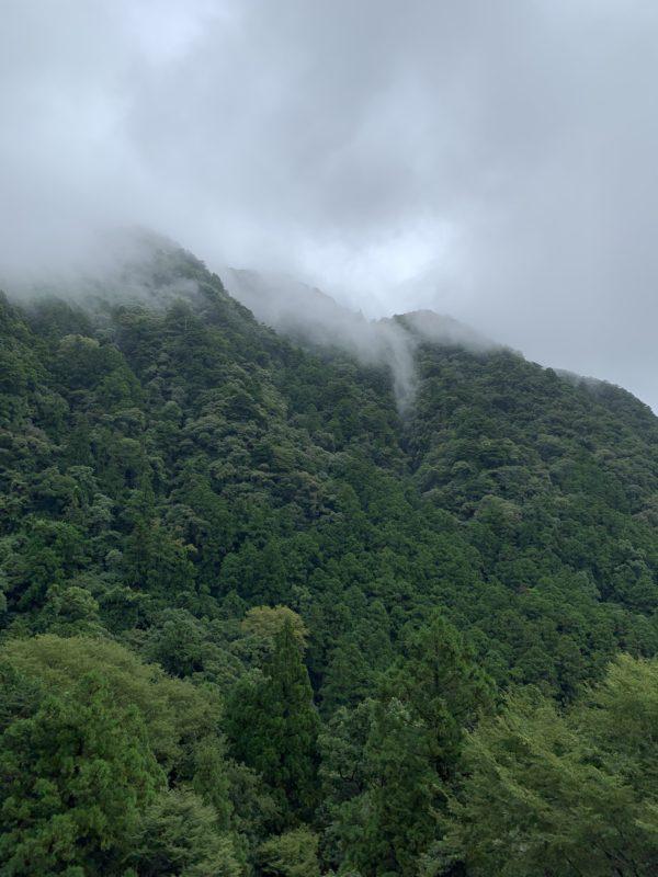 立秋末候  第三十九候  蒙霧升降  ふかききりまとう