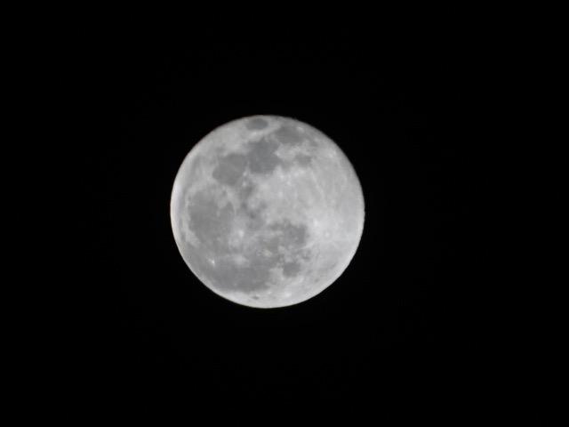 明日は獅子座の満月